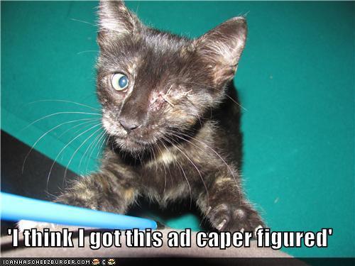 'I think I got this ad caper figured'