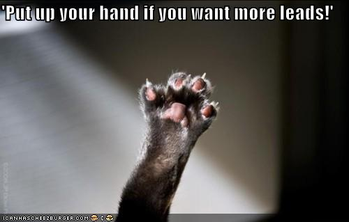 'Put up your hand if you want more leads!'