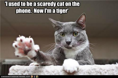 'I used to be a scaredy cat on the phone.  Now I'm a tiger'